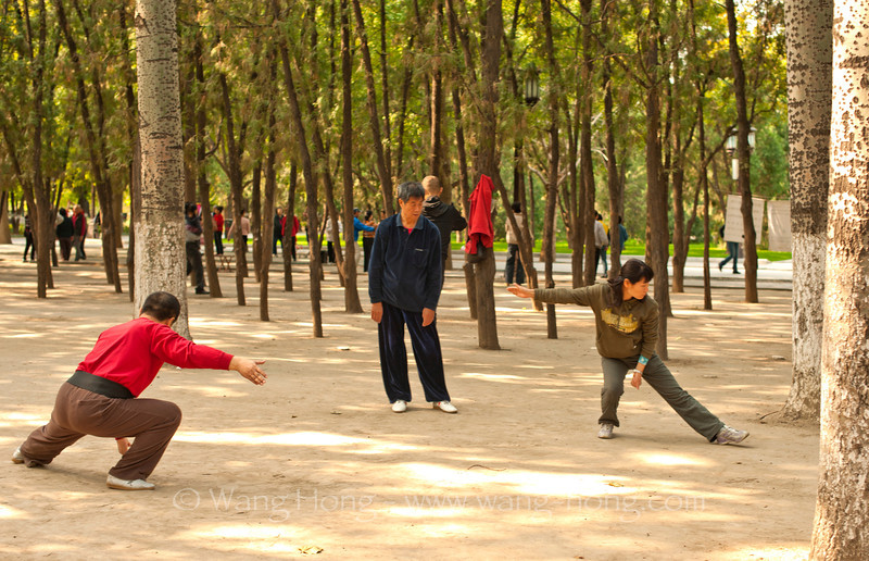 Taichi practice in the morning at the Temple of Earth Park. 地坛公园太极课。