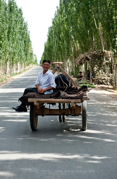On country road near Kucha