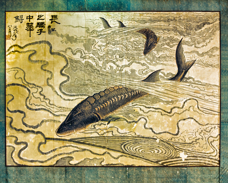 Chinese Sturgeon Research Center
