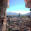 Lucca - View from Torre Guinigi Window