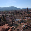 Lucca - View from the top of Torre Guinigi