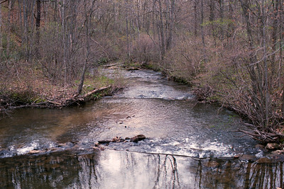 South Fork of Beech Creek
