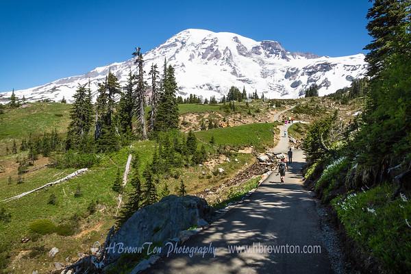Trail Head to Mt. Rainier