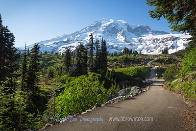 Trail Head to Mt. Rainier