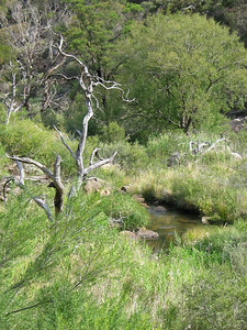 Werribee River - Werribee Gorge