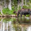 2016_7_17 Brainard State Park-9812-2