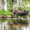 2016_7_17 Brainard State Park-9811-2