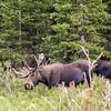 2016_7_17 Brainard State Park-9950