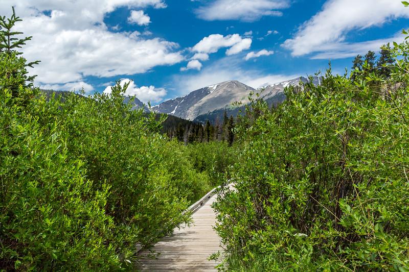 2016_7_18 Colorado Rocky Mountain National Park-2008
