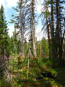 My Buddistick antenna set up for 20 meters near Skinny Fish Lake