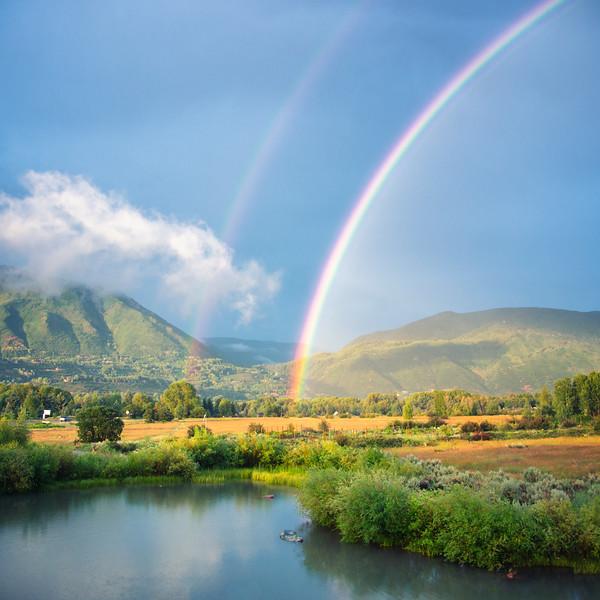 Aspen Rainbow