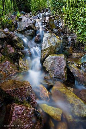 Mountain Stream - Yankee Boy Basin