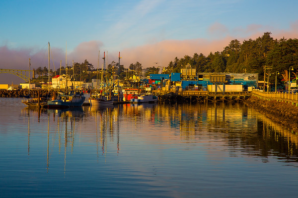 2017 September Oregon Coast-1684