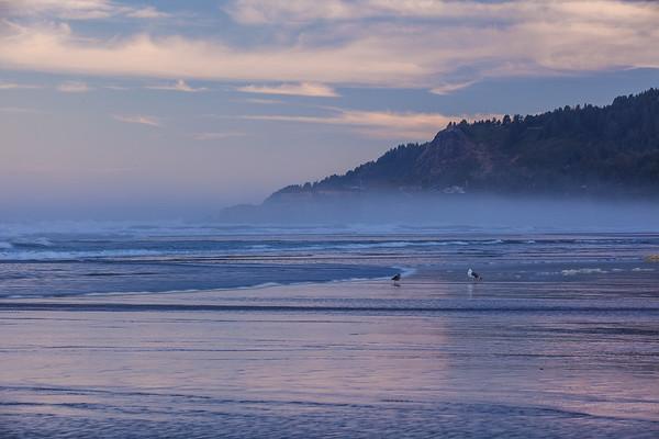2017_9_11_12 Oregon Coast-1156