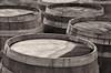 priam-vineyards-4104