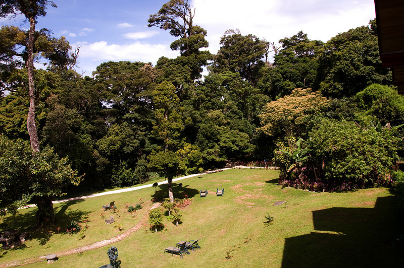 View out our window in Monteverde