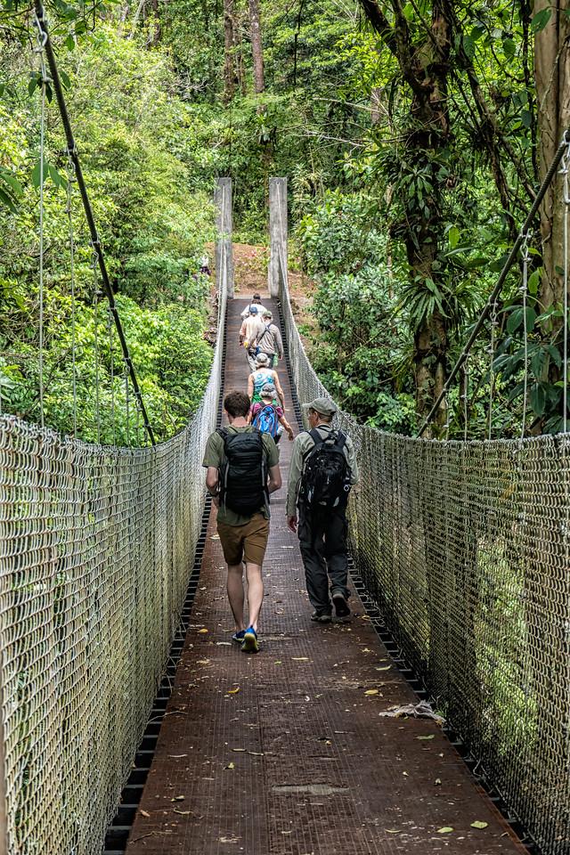 One of several suspension bridges we crossed