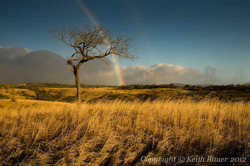 Beautiful Evening Light with a hint of a double rainbow