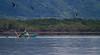 Pescador en golfo de Nicoya