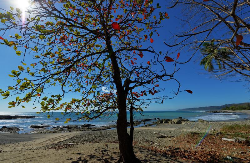 Playa Cuevas