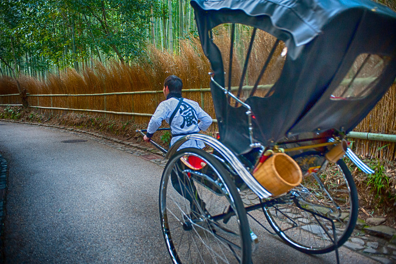 At the Bamboo Forest.  These guys would run with the rickshaw to pick up the next customer.   This guy was zipping by...