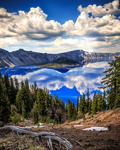 Reflections At Crater Lake (vertical), Crater Lake National Park, Oregon