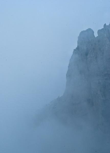Ay-Petri in fog