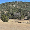 Panorama at bottom of trail, old ranger cabin on foreground, footbridge to petroglyphs at far right.