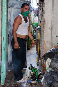 Door to door fumagation in Havana