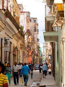 Shady Street in Havana