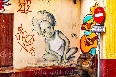 Wall Art Havana - Copyright 2018 Steve Leimberg UnSeenImages Com _Z2A3685