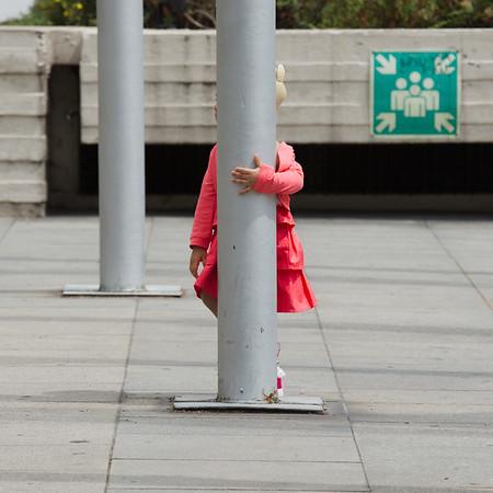 Safety Pole