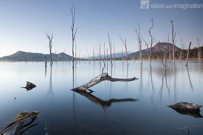 IMG_7161 Lake Moogerah