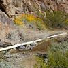 Pipe form Darwin Falls that feeds water to Panamint Springs Resort.
