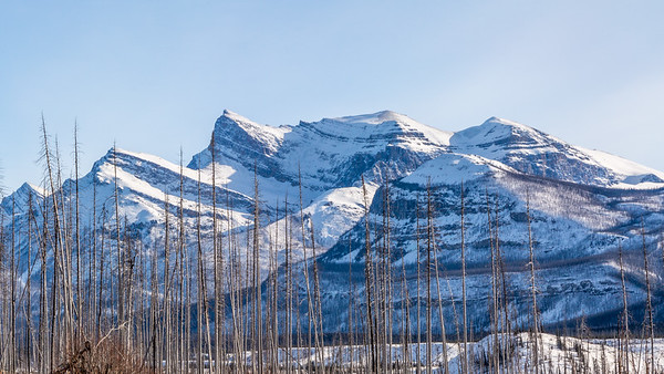 Mt Cline and Resolute Mountain