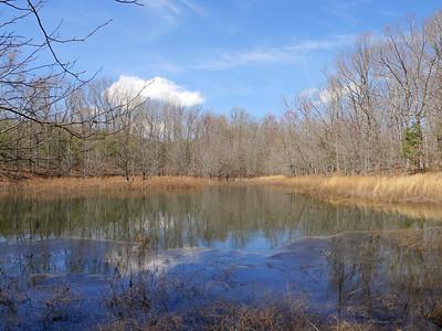 Day Lake Road Ponds and Lake Dimick