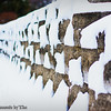 Wall with Snow