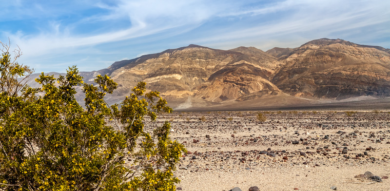 Death Valley - Rocky Field and Mountains