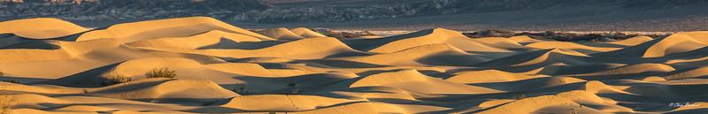 Sand Dunes at Dawn 2