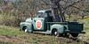 Hartland Orchard off I-66