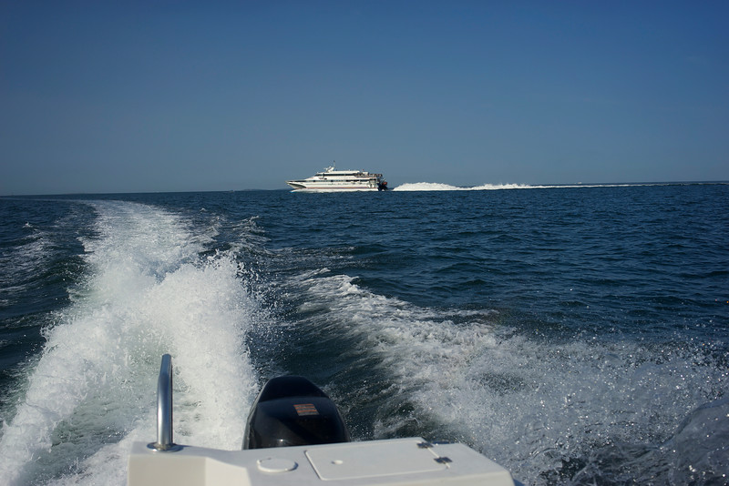 Rooster tail wake from large catamaran