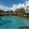 Disney Springs, Walt Disney World, Orlando, Florida - 15th July 2016 (Photographer: Nigel G Worrall)