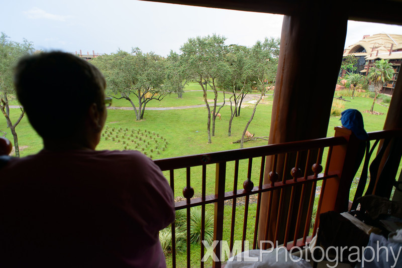 Disney's Animal Kingdom Lodge Arusha View