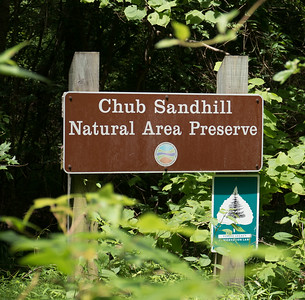 Chub Sandhill Natural Area Preserve,, Sussex Co., Va.