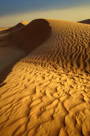 Desert Dune -  Dubai, UAE
