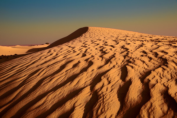 Desert dunes outside of Dubai, UAE