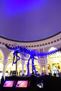 Dinosaur at the Dubai Mall