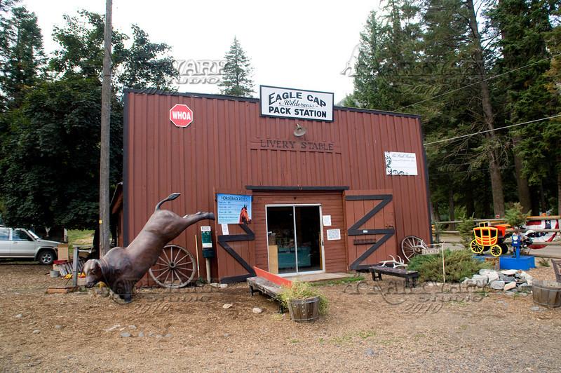 Elk Hunt 002