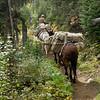 Elk Hunt 042