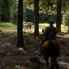 Elk Hunt 014